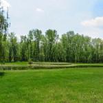 Riverview-park-food-drink-golf-more-marengo-illinois