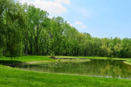 pond-slider